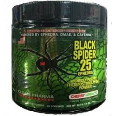 Black Spider Power